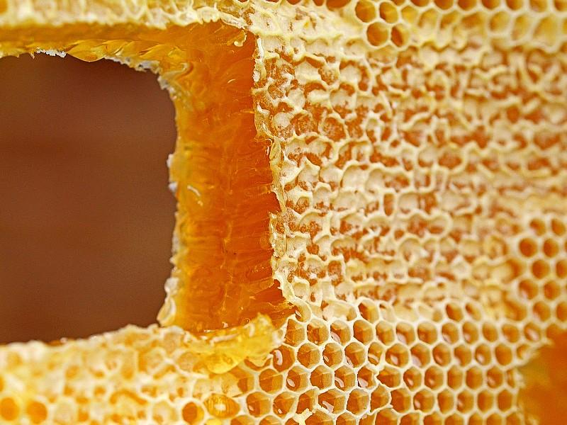 raw honey honeycomb